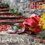 Feria de Biescas 2014