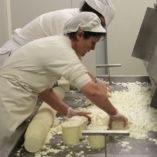 mas de 40 años elaborando quesos